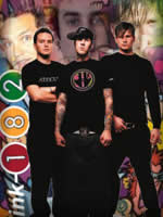 Ancora beneficienza per i Blink 182